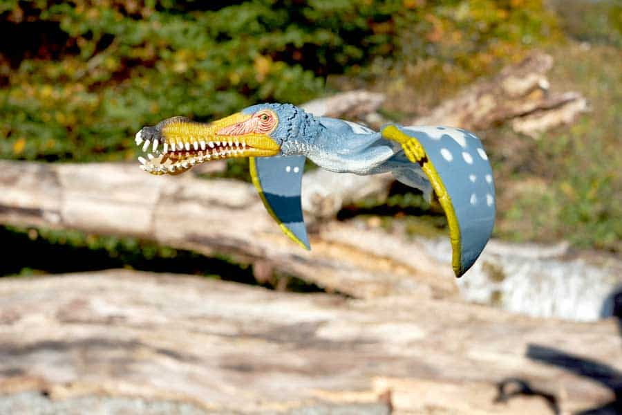 Pterosaurs that are now extinct