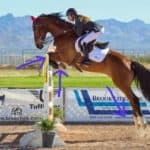 quarter horse jumping technique