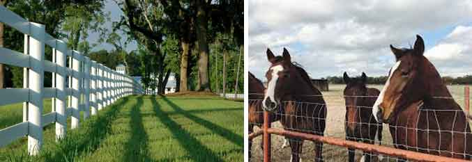 Horse fence construction